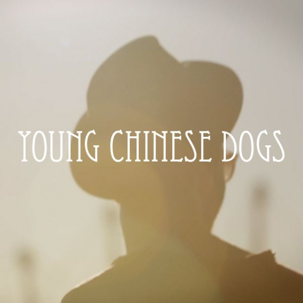 Young Chinese Dogs · Sweet Little Lies